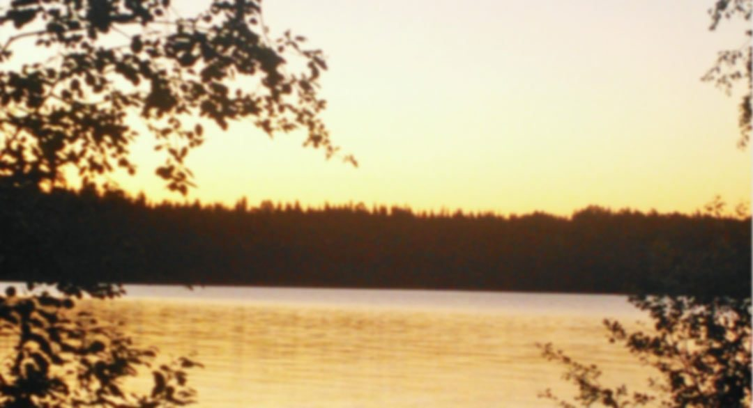 Best Midsummer Wishes from the MBA Alumni Board